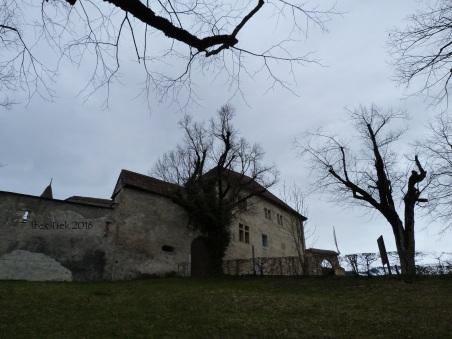 chateaudegruyeres11