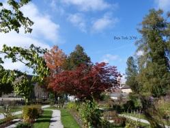 jardinfloral10
