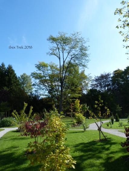 jardinfloral9