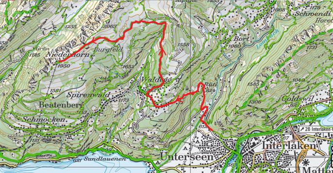 Niederhorn depuis Unterseen