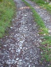 Chemin de terre et pierres, peu glissant